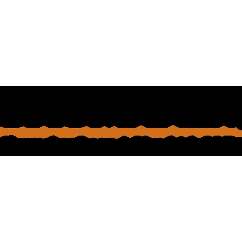 Shumaker, Loop, & Kendrick Law Firm Logo